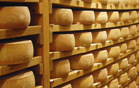 Tipos de maduracion de quesos